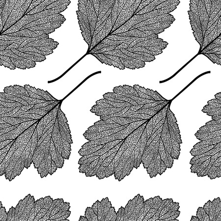 cleft: Vector seamless pattern with skeletonized hawthorn leaves.