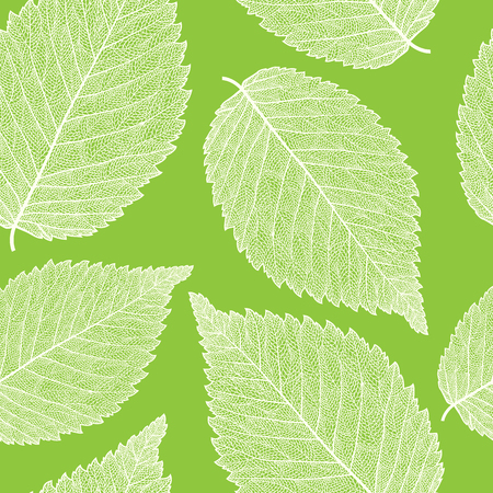 cleft: Vector seamless pattern with skeletonized elm leaves.