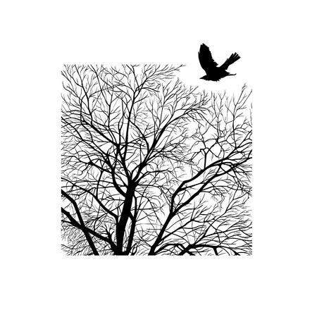 winter tree: minimalistic cropped image of a winter tree in the square. design element for cards, simple concise illustration. Illustration