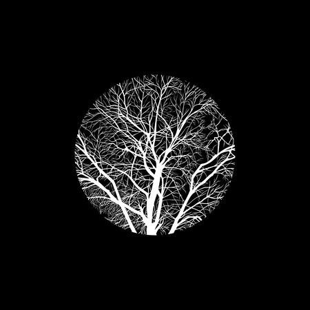cropped: minimalistic cropped image of a winter tree in a circle. design element for cards, simple concise illustration.