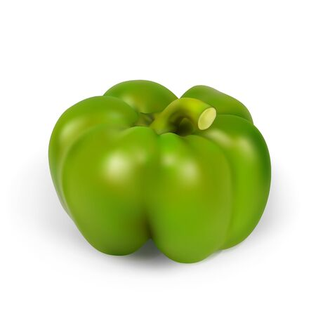 pimento: Realistic pepper. Vector illustration contains gradient mesh.