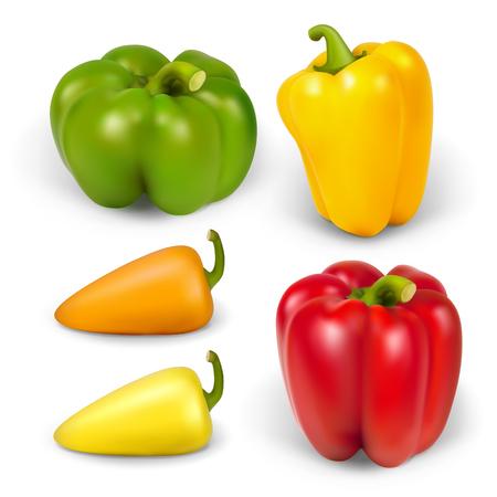 pimento: Set realistic peppersr. Vector illustration contains gradient mesh.