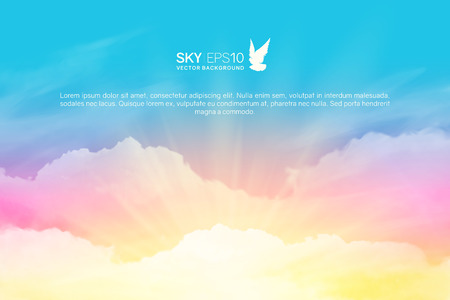 Horizontal vector background with realistic pink-blue sky and cumulus clouds. The image can be used to design a banner, flyer and postcard.