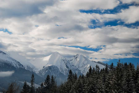 View on snowy mountain peaks over the trees with cloudy blue sky. Low Tatras, Slovakia