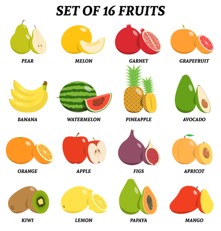 Vector set of fruits with signatures