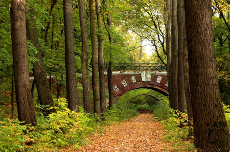 Brick bridge in the autumn forest Stock Photo - 558069
