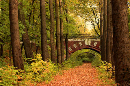 Brick bridge in the autumn forest in Russia photo