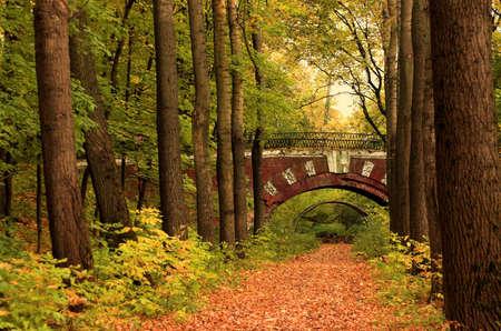 Brick bridge in the autumn forest in Russia Stock Photo