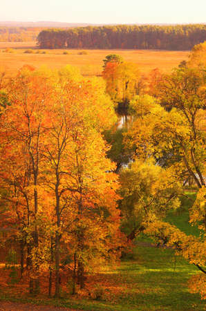 Onange autumn park in Arkhangelskoe, Russia Stock Photo - 614951