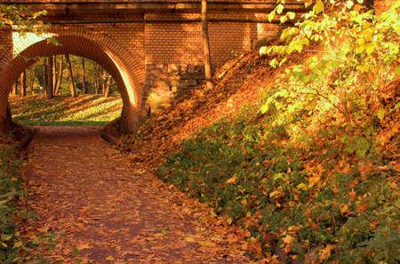 Brick bridge in the autumn orange forest in Russia