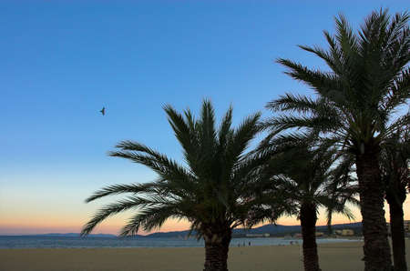 azur: Evening sunset on the beach of Cote'd Azur, France Stock Photo