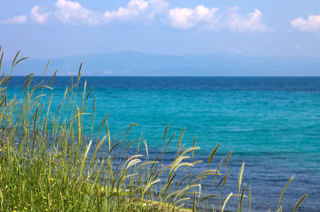 Grass, sea ans blue sky, Landscape Stock Photo - 773145
