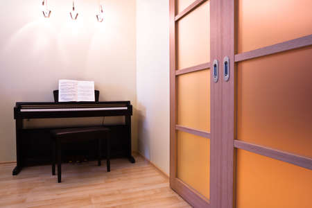 Piano and doors in modern room interior photo