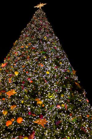 hristmas: Decorated �hristmas tree on black Stock Photo
