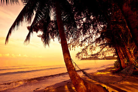 Straw hammock on the tropic beach on sunset photo