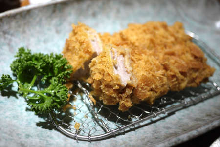 Japanese Tonkatsu Stock Photo - 27937781