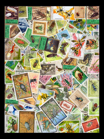 collectors: A collection of Thematic Postage Stamps of Insects,Beetles and other Bugs isolated on black