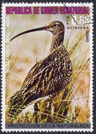 postal stamp: Equatorial Guinea circa1976 a postage stamp of 65 centimos worth 65centimos circa 1976 showing a Eurasian Curlew  (Numenius arquata)