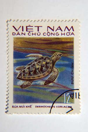 North Vietnam Circa 1975 A Postage Stamp worth 12 Xu circa 1975 showing a Leatherback Turtle  Dermochelys Coriacea