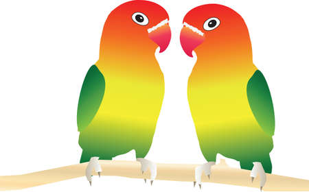 Two Lovebirds perched on a tree branch suitable for Valentines Day Card Vector