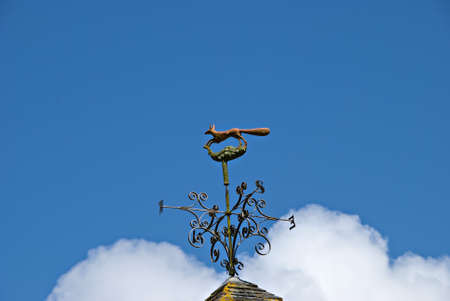 A Fox Weathervane against a blue sky photo