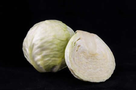 head shot: Cabbage Stock Photo