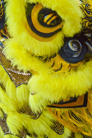 Decoration of yellow lion chinese lion dance in new year chinese celebration