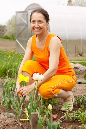 Happy Young Woman Gardening In The Springtime Sunshine Stock Photo
