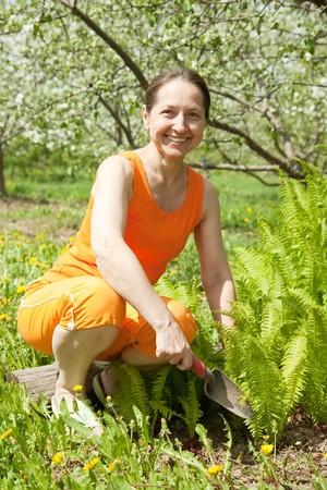 Happy  elderly  Woman Gardening In The Springtime Sunshine photo