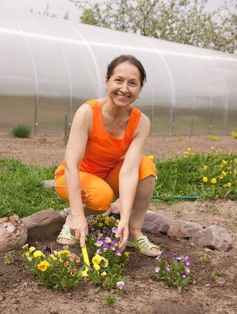 senior  woman gardener with flowers outdoor in her garden