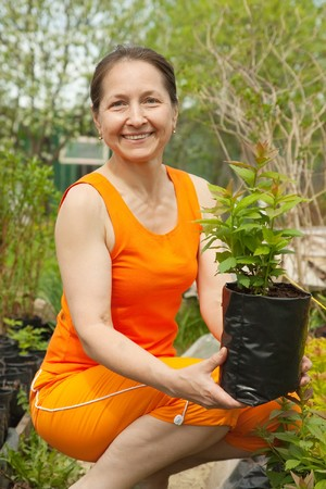 woman doing work in her garden with sprouts photo