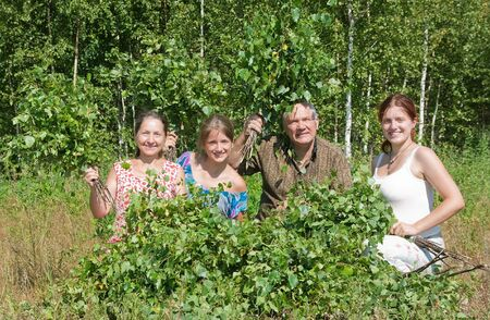 Family in a grove do birch besoms for a bath-house Stock Photo - 7410282