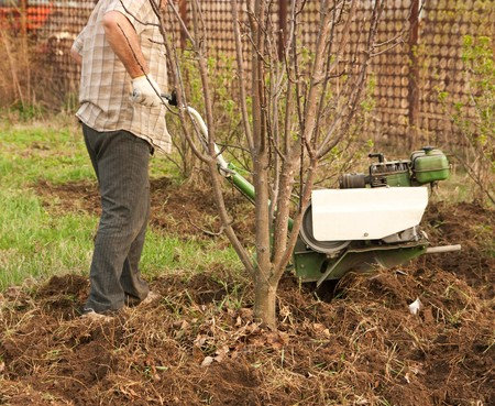 motor hoe: Close-up of gardener  working in the yard with mini tractor  Stock Photo