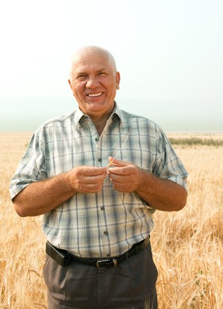 Happy senior man in field with ears of barley and wheat Stock Photo - 7563264