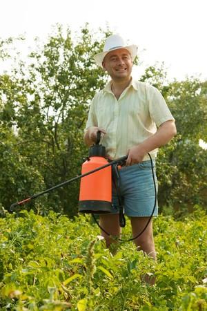Adult gardener working in the yard with garden spray photo