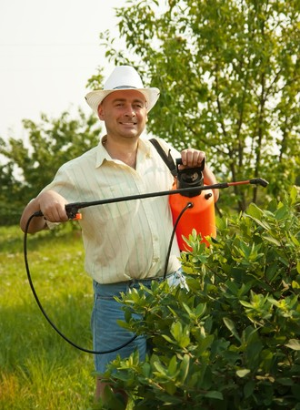 Adult gardener working in the yard with garden spray