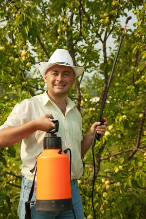 Adult gardener working in the yard with garden spray photo