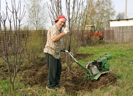 motor hoe: Senior gardener  working in the yard with mini tractor  Stock Photo
