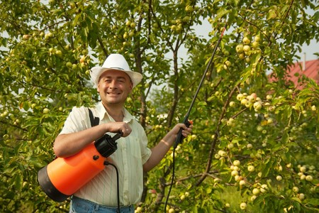 A man holding  garden spray and working in the yard