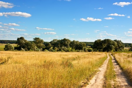 Country road through meadow under cloud in summer Stock Photo