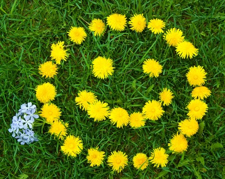 making face: Meadow with smiley face of yellow dandelions
