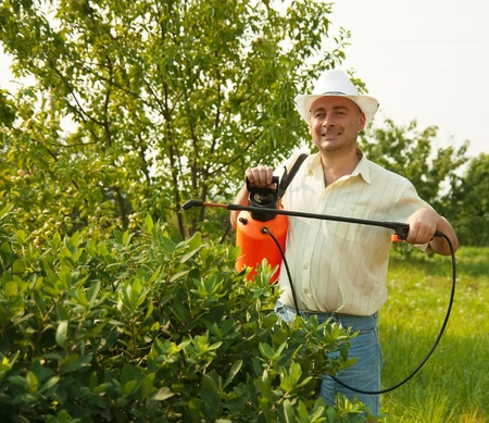 working man with garden spray against summer time in garden photo