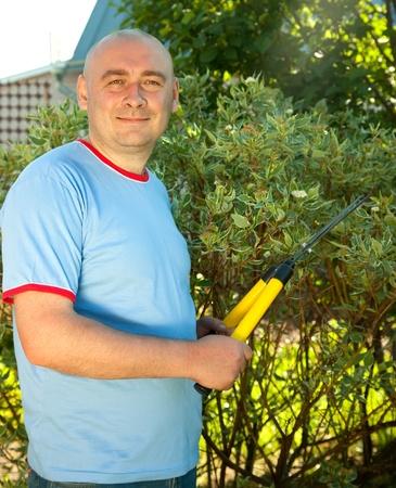 Mature man with garden pruner near   bush  photo