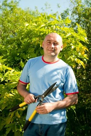pruner: Mature man with garden pruner near   bush