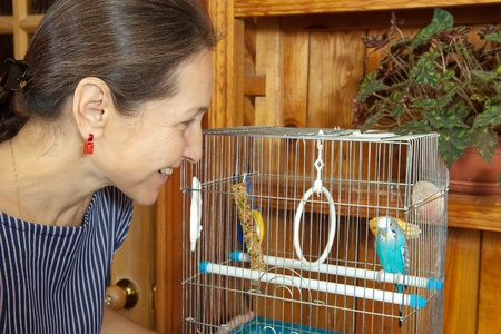 Mature woman takes care of the pet budgie. Stock Photo - 13536973