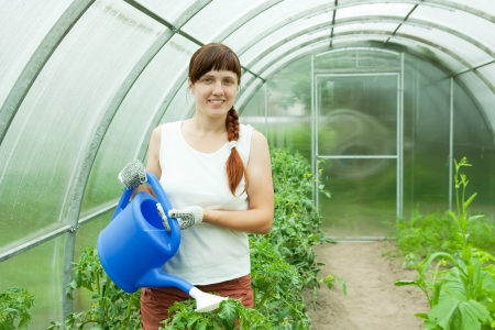 woman watering plants in   greenhouse Stock Photo - 13821398