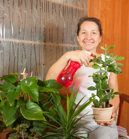 Mature woman with  home flowers in   pots  at her home photo