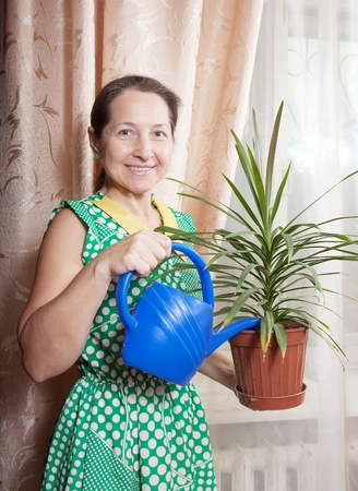 Pretty mature woman holds pot with plant in home photo