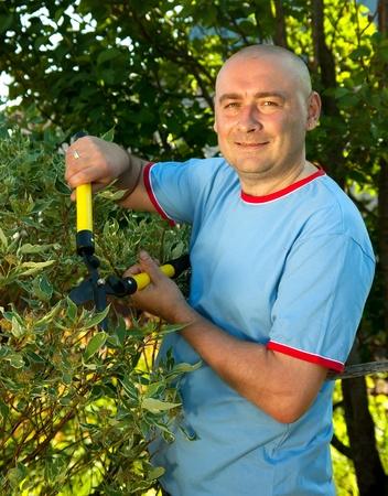 pruner: Male gardener with garden pruner near   bush