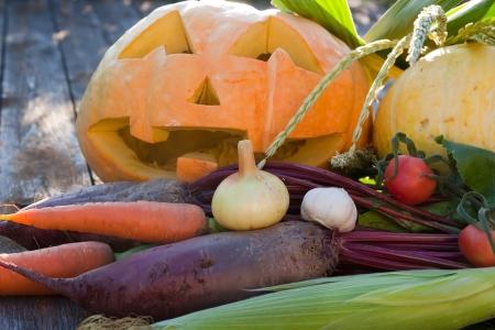 Autumn vegetable harvest with Halloween pumpkin Stock Photo - 16656562